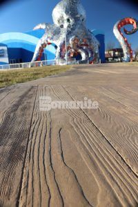 Close up of Custom Radius Wood Grain Planks using Bomanite Imprint Systems decorative concrete at Branson Boardwalk Aquarium in Bransom, MO, installed by Bomanite Licensee Musselman and Hall Contractors.
